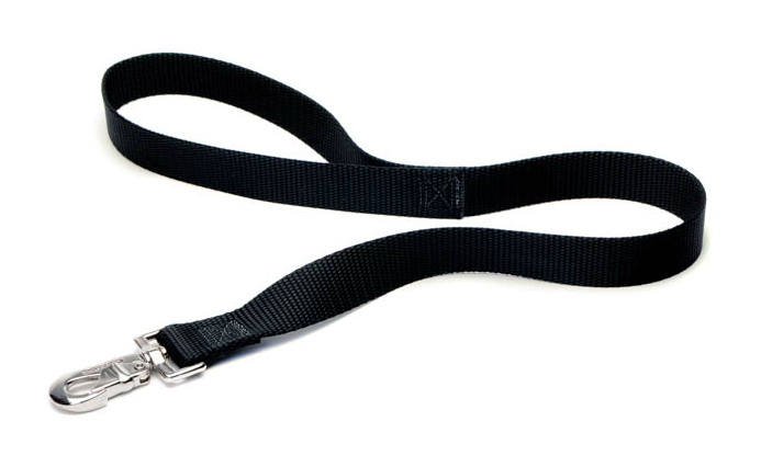 2 foot dog leash