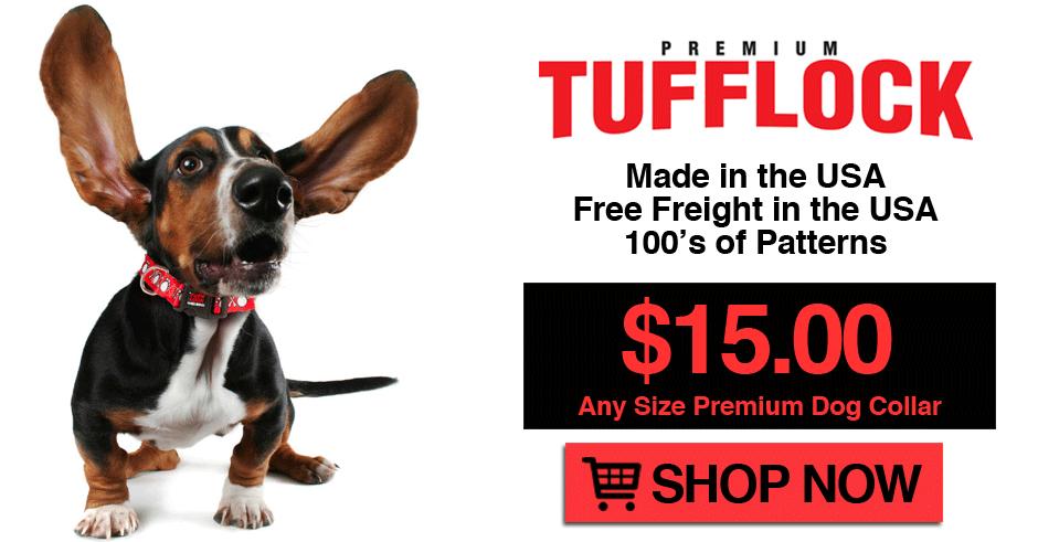 Premium Dog Collars