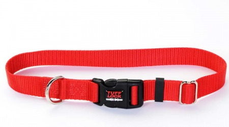 Plastic Buckle Dog Collar - Large