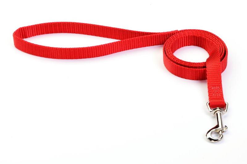 Nylon Dog Collars Leashes