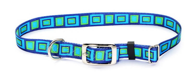 metal buckle dog collars