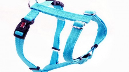Premium Tuff Lock Harness - turquoise_figure-h_harness